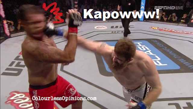 Roy Nelson KO punch vs. Rodrigo Nogueira in UFC Fight Night 39