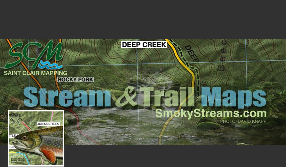 Streams of the Smokies - A Blog