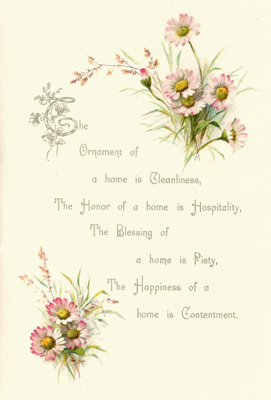 Free Flower Graphic Vintage Poems About Daisy Flowers