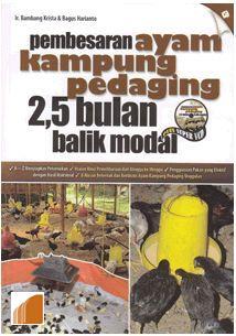 Peternakan Ternak Ayam Kampung
