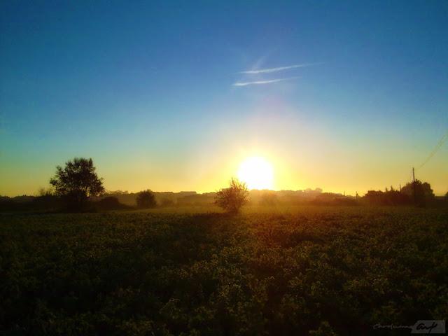 bruma-campo-amaneciendo