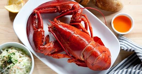 Prospek Bisnis Lobster Sebagai Udang Konsumsi, konsumsi lobster