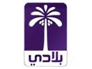 Beladi TV Iraq شاهد البث المباشر قناة بلادي الفضائية بث مباشر من العراق اخبارية سياسي