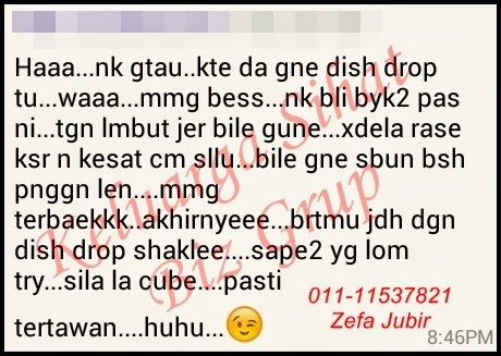 Testimoni Dish Wash Concentrate Shaklee