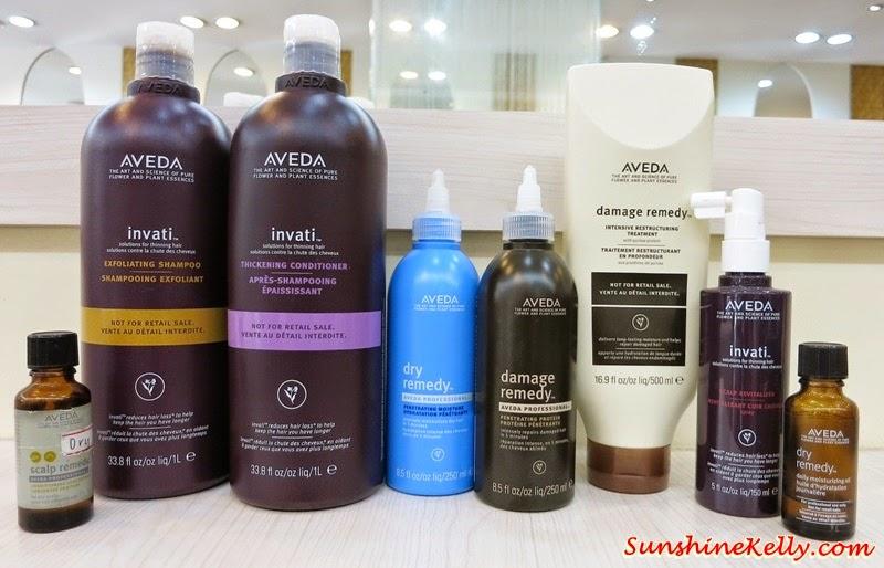 Review, Aveda Botanical Therapy, Min & Shunji Matsuo Hair Studio, Desa Sri Hartamas, Aveda Hair Treatment, Hair Treatment Review, Hair Review