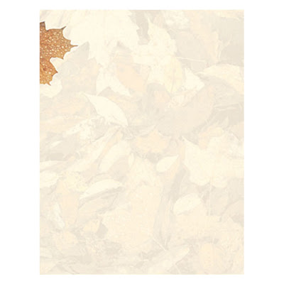 Crushed Leaves Thanksgiving Autumn Fall Border Paper
