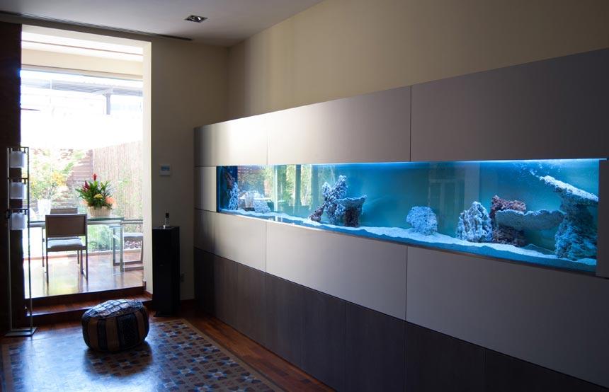 El agua como elemento decorativo - Pecera de pared ...