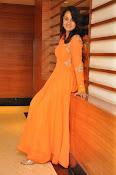 Nisha kothari at Bullet Rani event-thumbnail-10