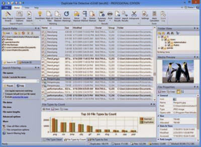 Duplicate File Detective 5.1.57 Professional Edition Portable Download