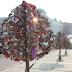 """""""Pokok cinta"""" Kunci rumah Sebangai Tanda Cinta"""