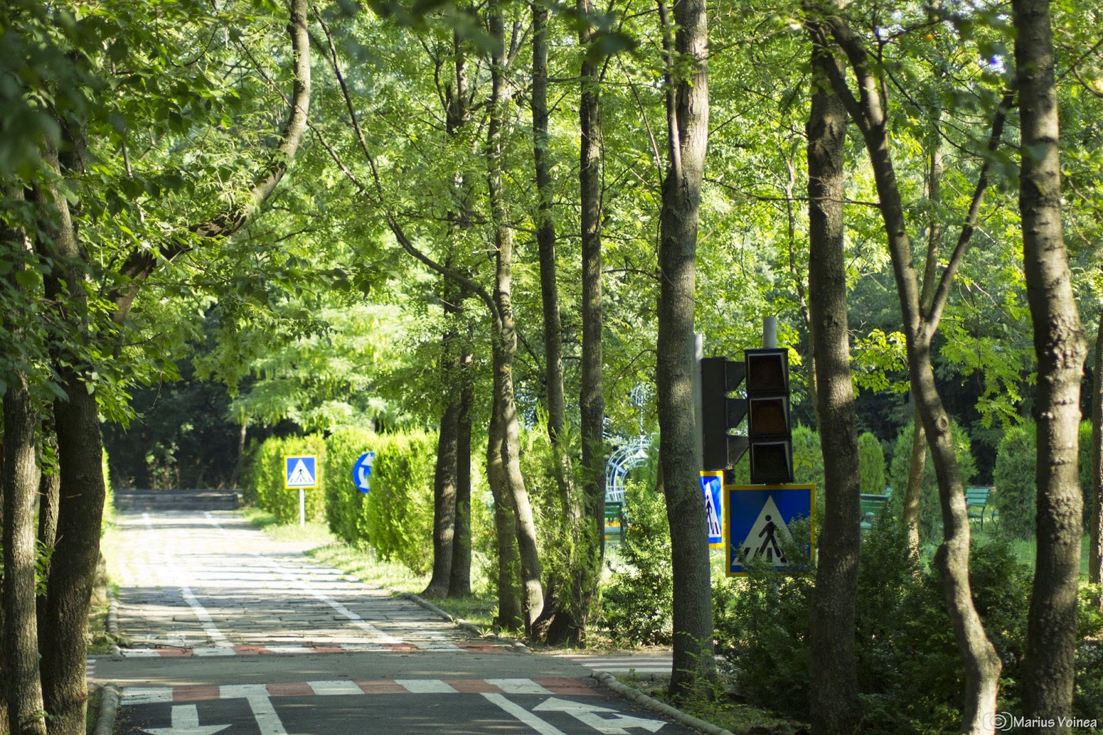 Parcul Crang, Buzau, foto 8