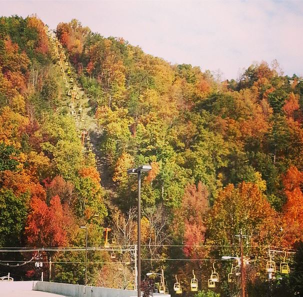 Gatlinburg, leaves, autumn
