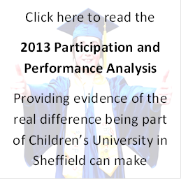 Impact Analysis 2013