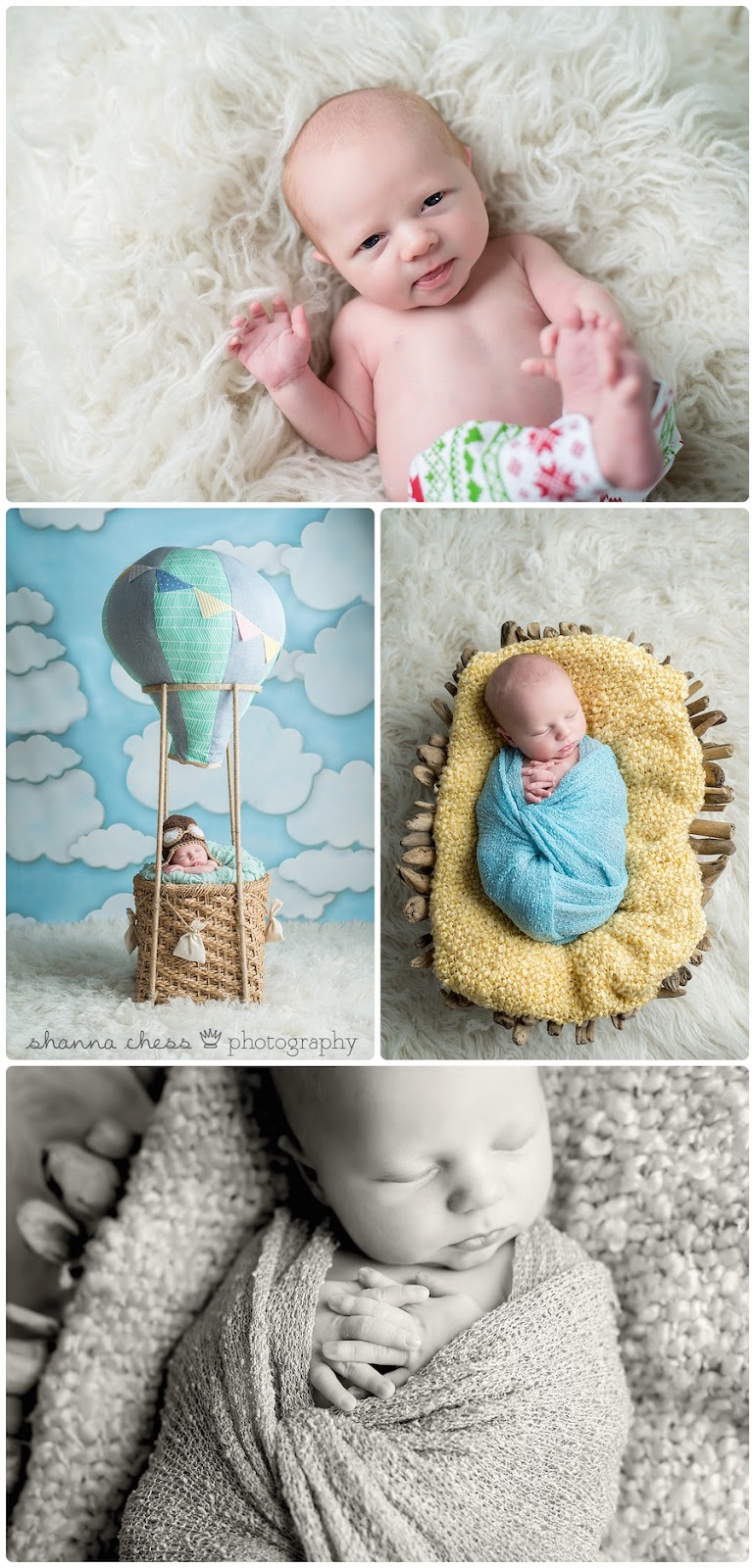 eugene springfield oregon newborn photography hot air balloon