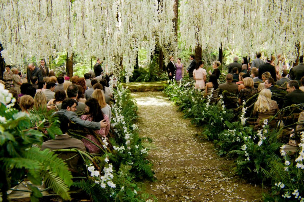 Natural wedding decoration wedding party ideas make for Wedding party ideas