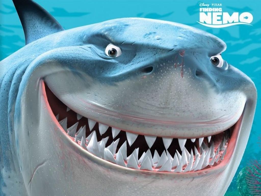http://2.bp.blogspot.com/-Pjso0d2ounA/TrqIVe9kr6I/AAAAAAAABOQ/0wwgI-lRDEA/s1600/Finding-Nemo-Bruce-the-Shark-Wallpaper-finding-nemo-6615914-1024-768.jpg