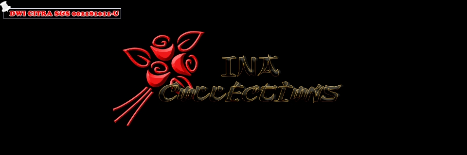 INA Collections