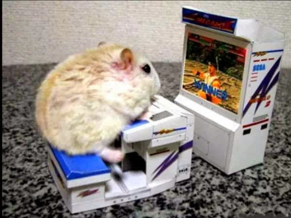 Funny animals of the week - 17 January 2014 (40 pics), hamster plays video game