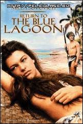 ver peliculas online en hd Regreso al lago azul - Audio Latino