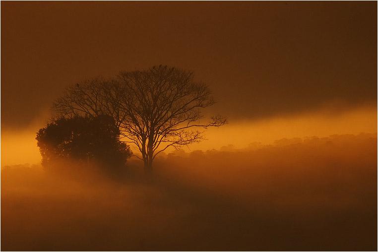 emphoka, photo of the day, Ferrarezi, Fujifilm X-S1
