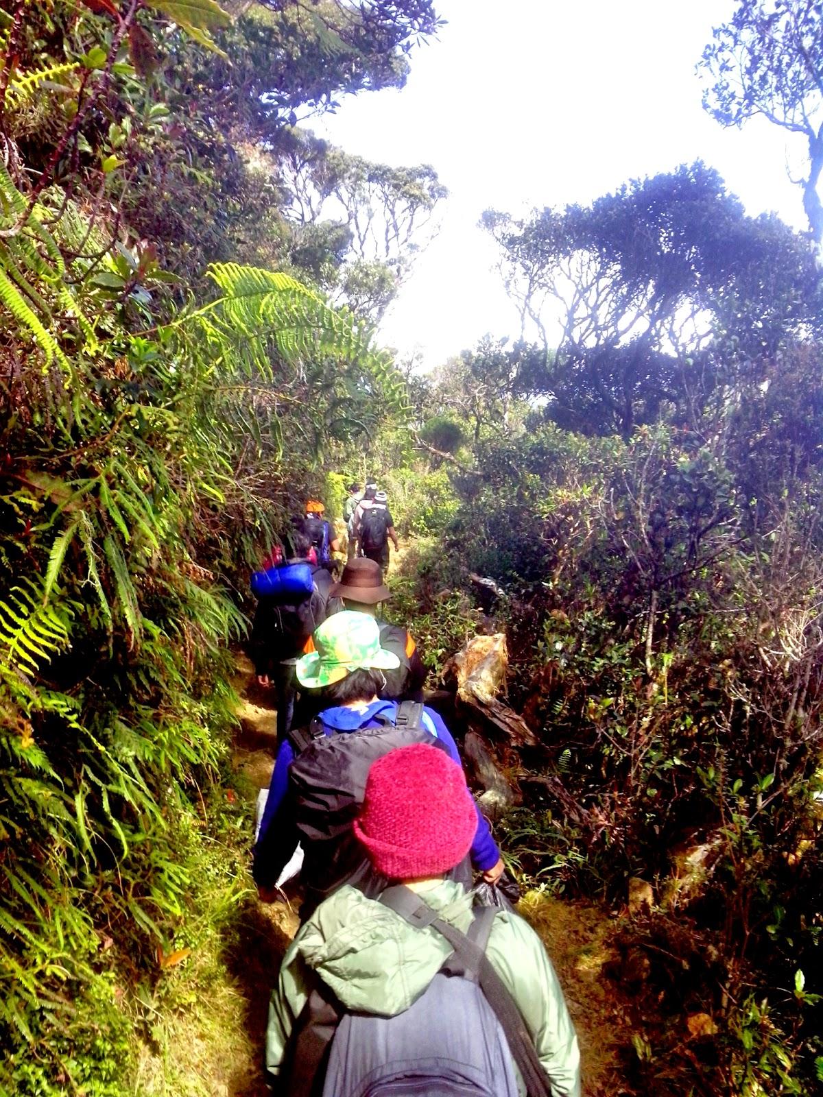 Trekking Ambaneg Trail