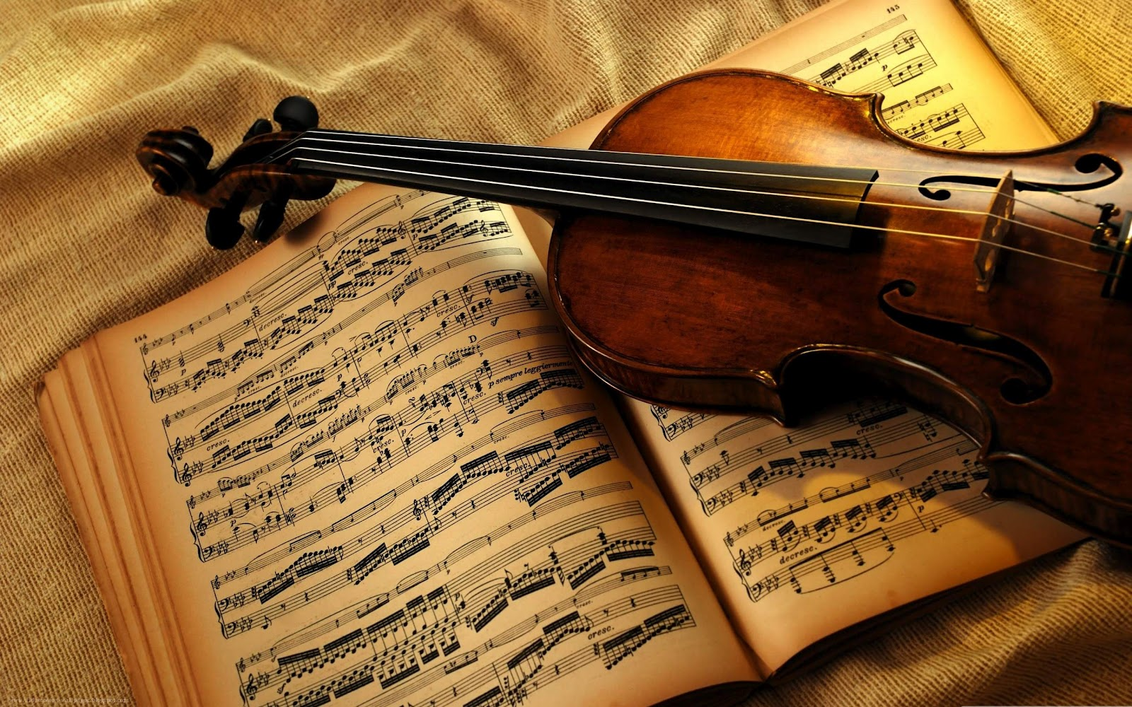 Top violin - Music Violins Collection