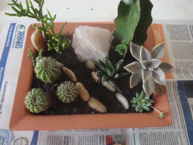enfeites para mini jardim : enfeites para mini jardim:Depois vou plantando, procurando deixar tudo com uma certa harmonia.