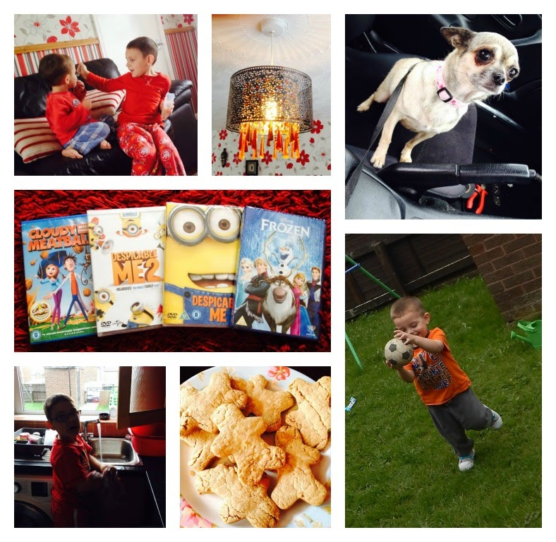 Project 365, A Photo A Day, Pixie, Dog, Washing Up, Baking, DVD, Disney, Frozen, Despicable Me, Cloudy with a Chance of Meatballs,