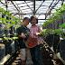 Indahnya Petualangan di Rumah Stroberi (Strawberry) Lembang Bandung