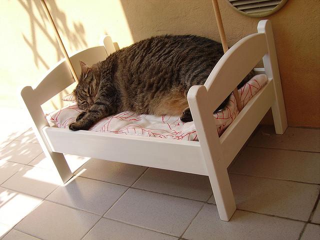 Gatos en casa y por qu no una cama de mu ecas para tu - Cuccia per gatti ikea ...