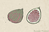 drawing of figs