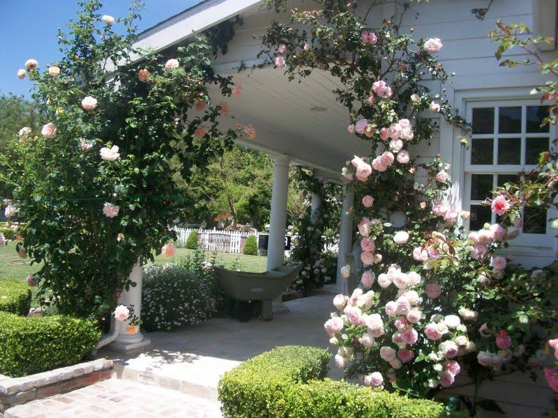 Full Bloom Cottage