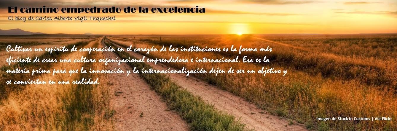 El camino empedrado de la excelencia