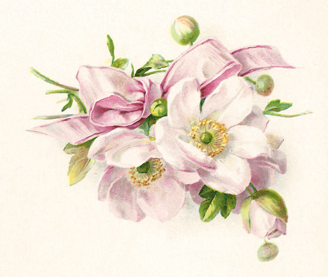 Antique Floral: Antique Images: Free Flower Graphic: Vintage Flower