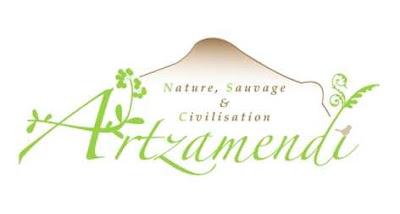 http://2.bp.blogspot.com/-Pmx6Z43j_Nk/TqBtX3zulVI/AAAAAAAABjg/94SzfU5MUlk/s400/Logo-Artzamendi-Inpi-reduit.jpg
