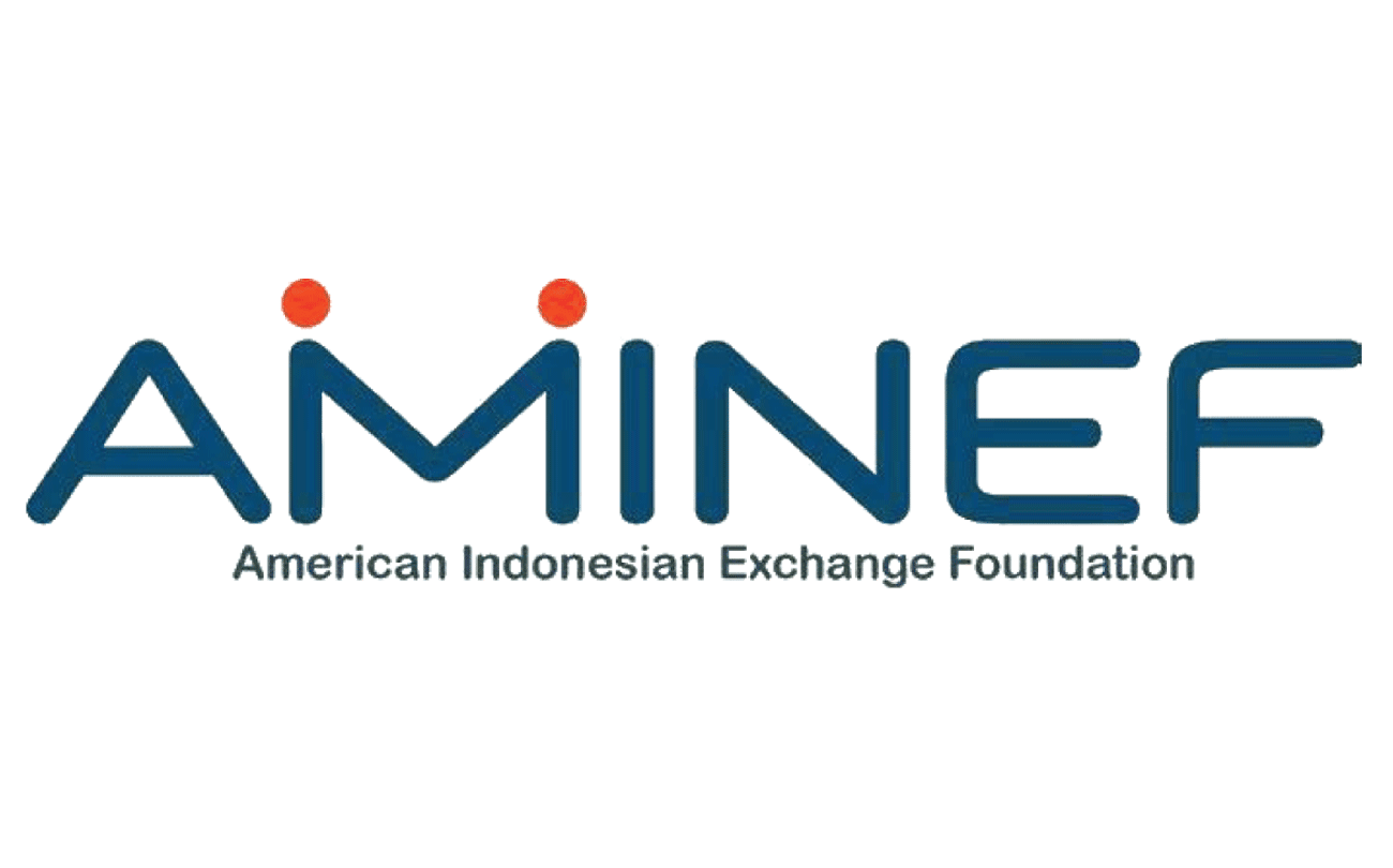 Image result for aminef logo