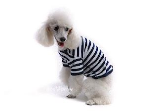 pruhované tričko pro psa
