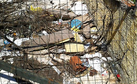 lixo jogado dengue