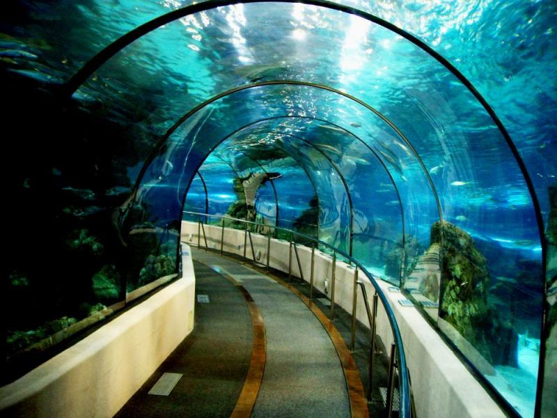 The Most Amazing And Weirdest Tunnels In The World Art