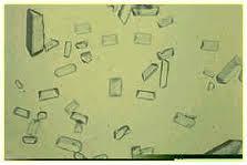 fosfato acido sodio: