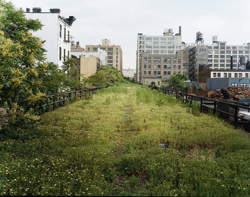 Old Blog Reborn Beauty Of High Line Park From New York
