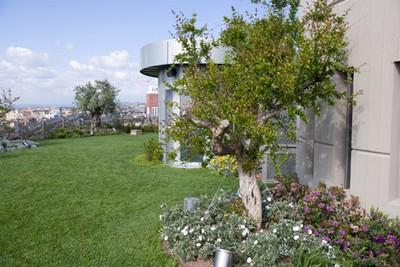 Progetto natura progettare un giardino pensile - Progettare un giardino ...