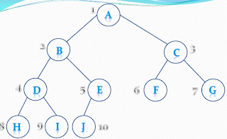 Almost Complete Binary Tree
