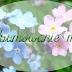 Podsumowanie miesiąca maj na blogu i nie tylko