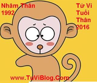 Tu vi tuoi Nham Than nam 2016