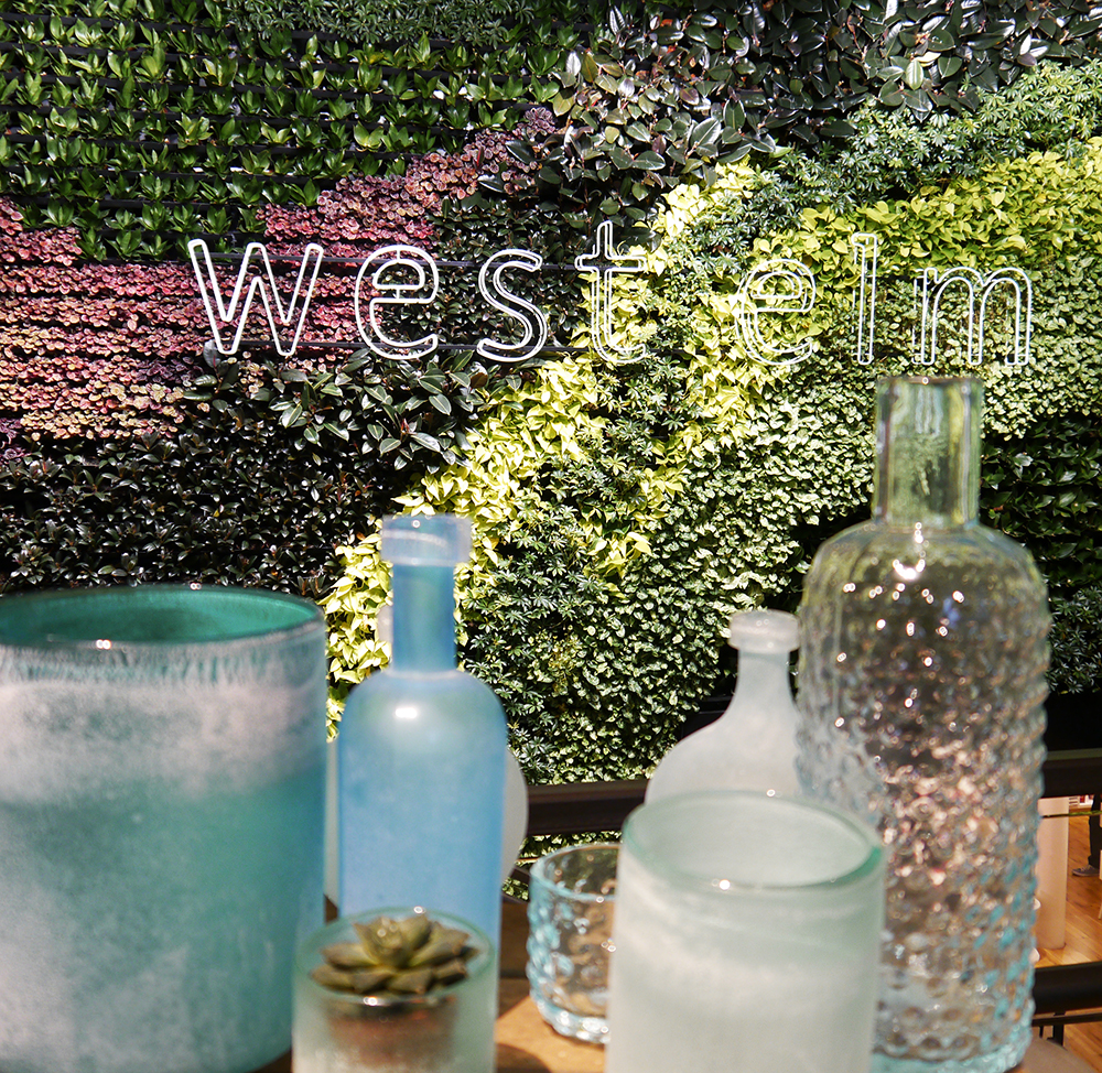 West Elm, London, blue vase, indoor foliage