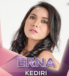 Erna dari kediri tersenggol.