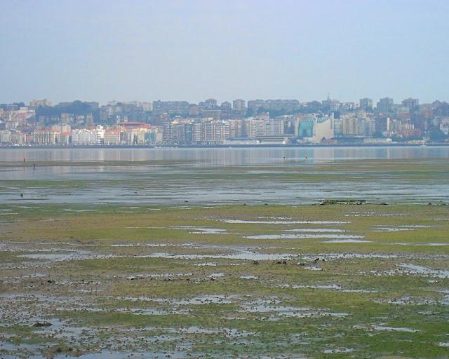 Bahía de Santander desde Pedreña