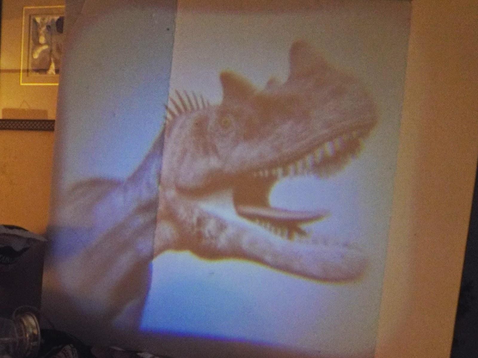 Dino Slide Show