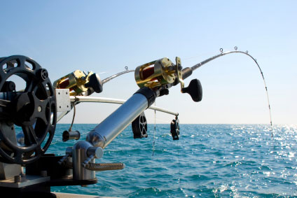 deep sea fishing charter boat hire in sydney with any boat